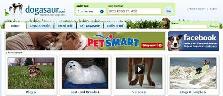 dogasaur red social sobre perros