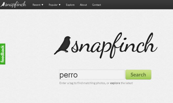 Snapfinch