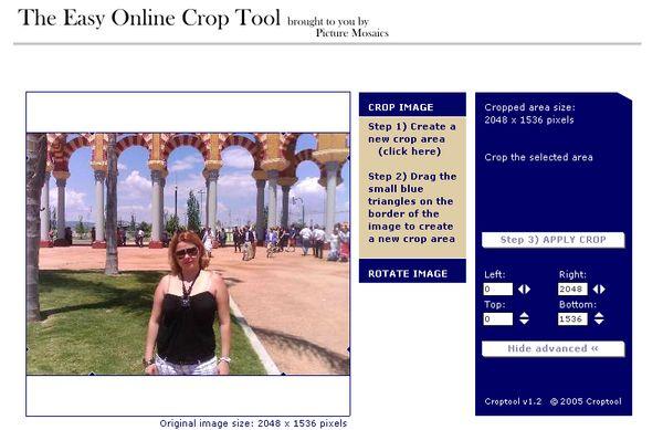 Easy Online Crop Tool