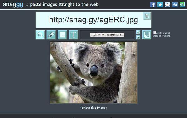 Snaggy editar imagenes