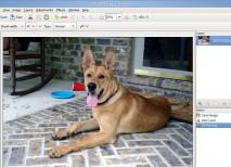 pinta software edicion imagen