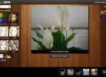 Meowfoto efectos filtros collages